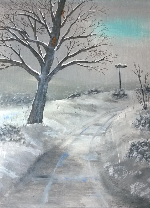 Verschneiter-Wanderweg-mit-Baum