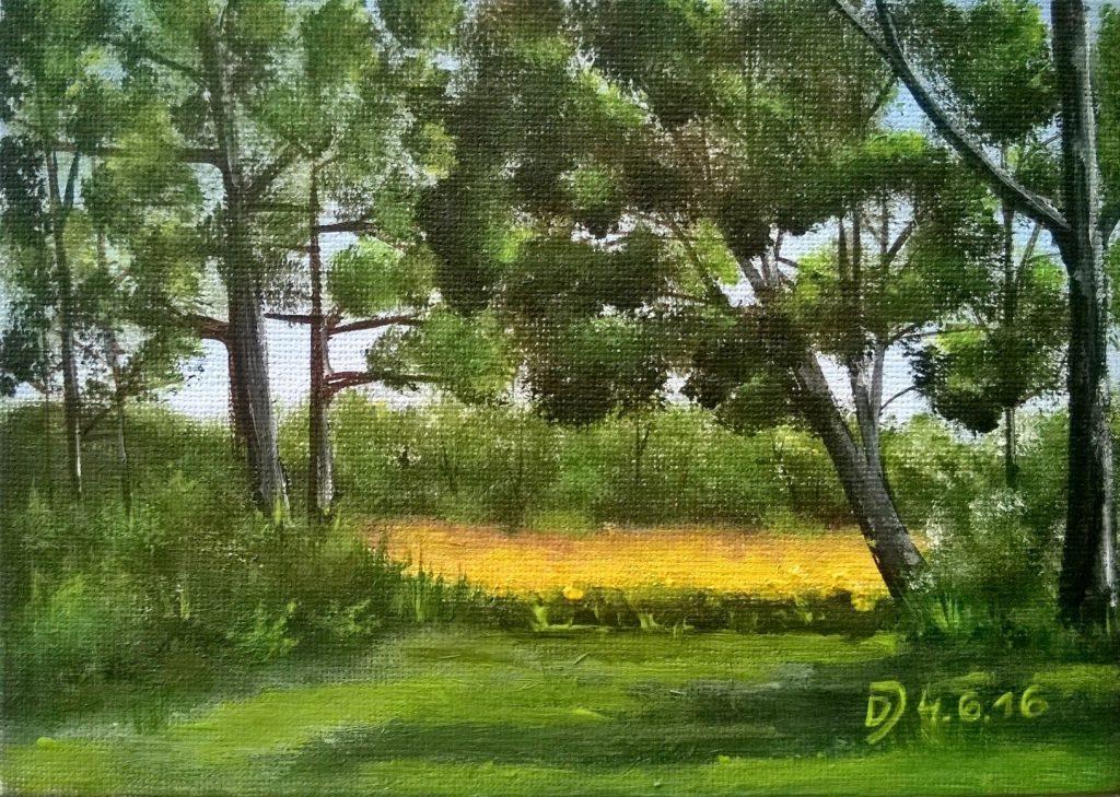 Malkurs-online-Auf-der-sommerlichen-Waldlichtung