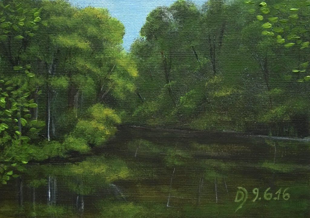 ruhiger-Flusslauf-im-Wald
